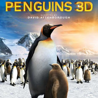 Penguins 3D